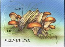 LIBERIA - Champignons - Paxillus Atrotomentosus