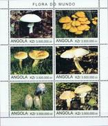 ANGOLA  - Champignons