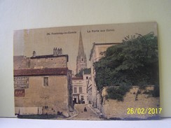 FONTENAY-LE-COMTE (VENDEE) LA PORTE AUX CANES. - Fontenay Le Comte