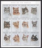 C279 SIERRA LEONE FAUNA PETS CATS OF THE WORLD 1KB MNH