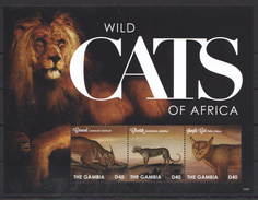 C284 2012 GAMBIA FAUNA WILD CATS OF AFRICA 1KB MNH