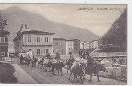 Seravazza - Trasporto Marmi - Bellissima Animazione - 1916     (A-21-100617) - Italia