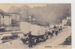 Seravezza - Trasporto Marmi - 1911     (A-21-100609) - Italia