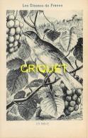Format Carte Postale, Bon Point Collection Charrier, Les Oiseaux De France, La Grive, Descriptif Au Verso - Vieux Papiers