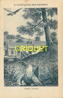 Format Carte Postale, Bon Point Collection Charrier, L'intelligence Des Animaux, La Poule, Descriptif Au Verso - Vieux Papiers