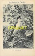 Format Carte Postale, Bon Point Collection Charrier, Les Oiseaux De France, Le Bouvreuil, Descriptif Au Verso - Vieux Papiers