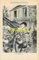 Format Carte Postale, Bon Point Collection Charrier, Les Oiseaux De France, La Fauvette, Descriptif Au Verso - Vieux Papiers