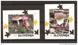 SLOVENIA 2014,MUSHROOMS,BOLETUS,AM ANITA MUSCARIA,MNH