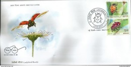 India  Ladybird Beetle  First Day Cover , First Day Cancelled, Insects, Coccinellidae, As Per Scan