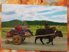 Mongolia. Hatgal Village - Modern Postcard - Mongolië