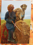 Mongolia. Darhadyn Wetland, Woman Cameleer, Camel, Traditional Costume - Modern Postcard - Mongolië