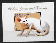 Sierra Leone 2004 Bloc 580 Neuf Avec Chats