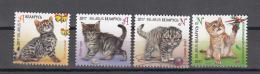 Belarus Weissrussland 2017 MNH** Mi. Nr. 1169-1172  Kittens M