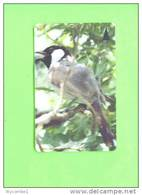 BAHRAIN - Magnetic Phonecard/Bird