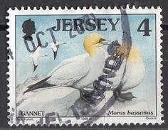 864 Jersey 1998 Uccelli Birds - Sula Bassana Morus Bassanus - Viaggiato Used - Jersey
