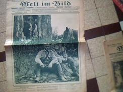 Militaria.1914/1919  Journal De Guerre Allemand WELT IM BILD  23 Juin 1915    Ecrit En Plusieurs Langues - Zeitungen & Zeitschriften