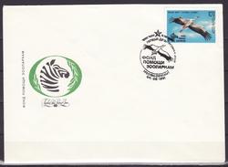 Russia USSR 1991 FDC Fauna Zebra White Stork Birds Bird