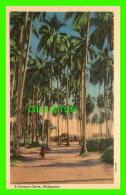 MANILA, PHILIPPINES - A COCONUT GROVE, ANIMATED -  CURTEICH-CHICAGO - - Philippines