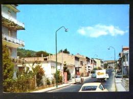 CAMPANIA -CASERTA -ALVIGNANO -F.G. LOTTO N° 580 - Caserta