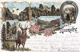 Litho Gruss Von Der ROSSTRAPPE, Gel.1898 Nach Mähren, Magdeburg Bahnstempel, Seltene Karte, Gebrauchsspuren - Böhmen Und Mähren