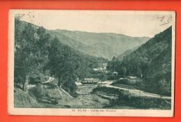 IAQ-19  Blida,  La Ville Des Roses Wilaya De Blida . Vallée Des Moulins. Circulé, Timbre Manque - Blida