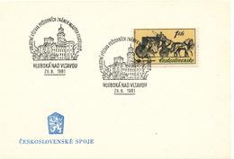 L3289 - Czechoslovakia (1981) Hluboka Nad Vltavou: Regional Stamp Exhibition Young Philatelists (castle)