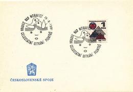 L3306 - Czechoslovakia (1981) Hradec Nad Moravici: National Gathering Of Pioneers (= Youth Organization)