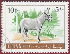 1968 - Donkey (Equus Asinus Asinus) - Yt:LB 273 - Used