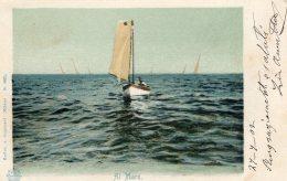 [DC9782] CPA - AL MARE - PICCOLA BARCA A VELA - Viaggiata 1902 - Old Postcard - Barche