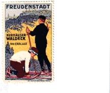 1 Sluitzegel Poster Stamp Pub  Freudenstadt KURHAUSER Waldeck  Skifahren Imp.Art Instituut ZURICH  3,5cmx5,5cm - Sports D'hiver
