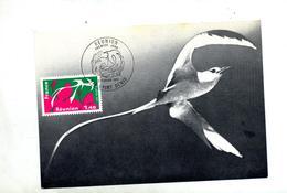 Carte Maximum 1977 Saint Denis Reunion - 1970-79