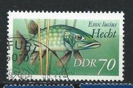 DDR-RDA - N°  2720 - Poissons D'eau Douce - O