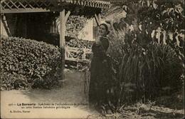 44 - LA BERNERIE-EN-RETZ - Costumes - Coiffe - La Bernerie-en-Retz
