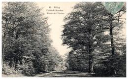78 - VELIZY --  Forêt De Meudon - Route De L'Ursine - Velizy