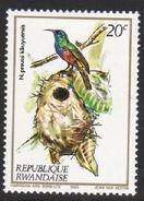 N. Preussi Kikuyuensis Mounted Mint Stamp - Songbirds & Tree Dwellers