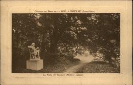 44 - BOUAYE - Chateau -publicité Laiterie Du Bois De La Noë - Bouaye