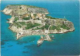 T3144 Isole Tremiti (Foggia) - Panorama Aereo Dell'Isola Di San Nicola - Nice Stamp Timbres Francobolli Annullo Termoli