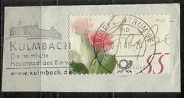 KULMBACH Die Heimliche Hauptstadt Des Bieres - 10-01-2005 - [7] Repubblica Federale