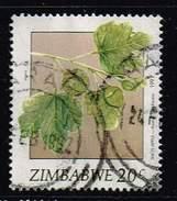 Zimbabwe 1991, Michel# 460 O Wild Fruits: Snot-apple