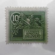 Timbre  Etats  Unis  D Amerique  N 10  Timbre  Pour  Lettre  Espress   1908  Trace  Charniere - United States