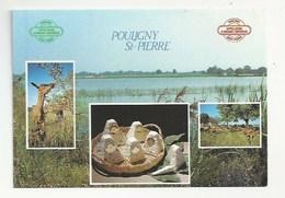 36 - POULIGNY-SAINT-PIERRE -SON FROMAGE D'APPELLATION D'ORIGINE CONTROLÉE - RECETTE SOUFFLÉ AU FROMAGE DE CHEVRE - ETANG - France