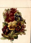 Chromos  DECOUPIS FLEURIE - Flowers