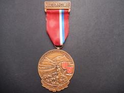 Medaglia Svizzera Martigny-Combe - Marche Des Amis De Plain-Cerisier - ME66 - Non Classificati