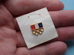 U S A ( Zie Foto ) 13 Mm X 11 Mm. ! - Badges