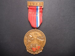 Medaglia Svizzera 1973 - Marche Des Amis De Plain-Cerisier - ME72 - Gettoni E Medaglie