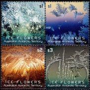 Australian Antarctic Territory (AAT) - 2016 - Ice Flowers - Mint Stamp Set - Australian Antarctic Territory (AAT)