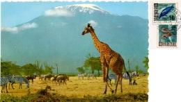 TANZANIA  African Wildlife  Giraffe Zebreas And Wildbeeste Below Kilimanjaro  Nice Stamps - Tanzania