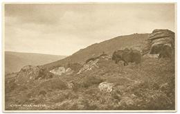 A View Near Haytor - Unused - Haytor Tea House Dartmoor - England
