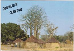 AFRIQUE DE L´OUEST,Sénégal,prés Guinée,SINE SALOUM,VILLAGE - Sénégal