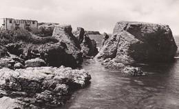 56-----BELLE ISLE EN MER--SAUZON---fort Sarah-berhardt--voir 2 Scans - Belle Ile En Mer